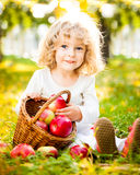 Niño con la cesta de manzanas Imagen de archivo