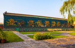 Nio-drake (den långa) väggen av Datong. Royaltyfri Bild