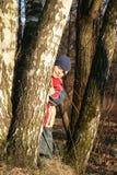 Niño en una madera del resorte Fotografía de archivo libre de regalías