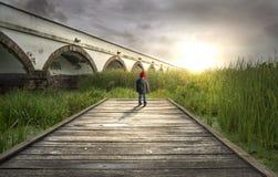 Nio-hål bro Fotografering för Bildbyråer