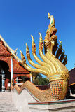 Nio head naga monterade på stegen i thailändsk tempel Royaltyfri Foto