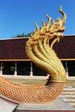 Nio head naga monterade på stegen i thailändsk tempel Arkivfoton