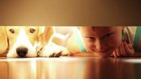 Niño pequeño con su perro del beagle del mejor amigo debajo de la cama almacen de metraje de vídeo