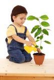 Niño pequeño sonriente que riega la planta Imagen de archivo