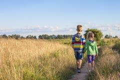 Niño pequeño y muchacha que caminan juntas llevando a cabo las manos Imagen de archivo