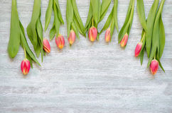 Nio röda gula tulpan på tappningträbakgrunden Fotografering för Bildbyråer