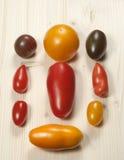 Nio tomater Royaltyfri Foto