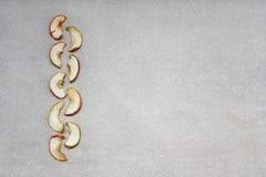 Nio torkade äppleskivor på papper arkivfoto