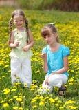 Niños en campo con la flor. Fotos de archivo libres de regalías