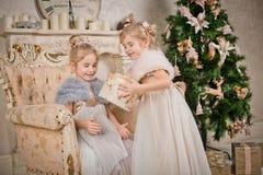 Niños en el árbol de navidad Imagen de archivo libre de regalías