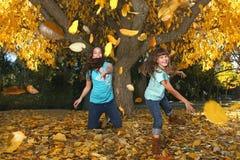 Niños en un bosque del otoño en la caída Foto de archivo libre de regalías