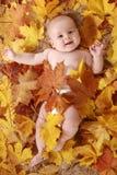Niños hermosos en hojas de otoño Imagen de archivo libre de regalías