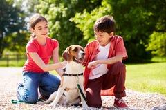 Niños hispánicos que toman el perro para el paseo Foto de archivo libre de regalías