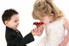 Niños jovenes adorables que huelen la margarita junto Imagen de archivo libre de regalías