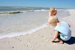 Niños jovenes que cogen la concha marina en la playa Fotografía de archivo