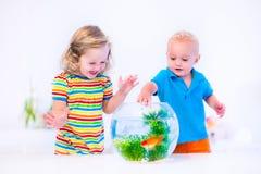 Niños que miran el cuenco de los pescados Imagen de archivo