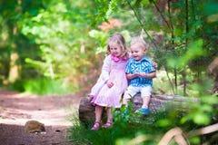 Niños que miran un erizo en el bosque Foto de archivo
