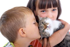 Niños y gato Foto de archivo