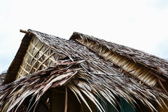 Nipah palm made for roof of house Royalty Free Stock Photo