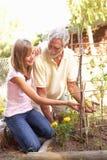 Nipote adolescente e nonno che si distendono dentro fotografia stock