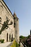Nipote del chateau Immagini Stock