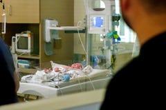 Nipote in NICU Fotografia Stock Libera da Diritti