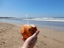 Nippen an einer Kokosnuss auf dem Strand Lizenzfreies Stockbild