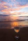 Nippende wijn bij zonsondergang Stock Foto