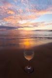 Nippende wijn bij zonsondergang Stock Afbeelding