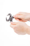 Nipper, claw Royalty Free Stock Image