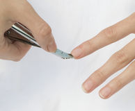 Nippers for manicure royalty free stock photo