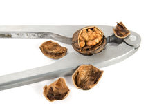 Nippers for splitting of walnuts Royalty Free Stock Images