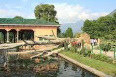 Nishat Bagh. Stock Photography