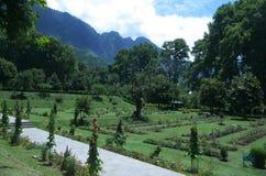 Nishat Garden scene in Srinagar-5. A lush green garden landscape in Kashmir showing flora and fauna in a vibrant color Royalty Free Stock Photography