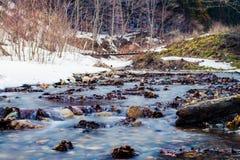 Nishi-Fluss im Winter stockbilder