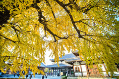 Nishi Hongan-ji Royalty Free Stock Photos