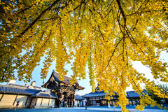 Nishi Hongan-ji Royalty Free Stock Images