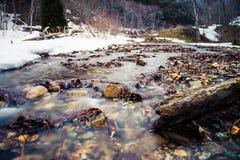 Nishi rzeka w zimie Zdjęcie Royalty Free