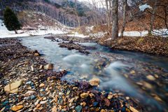 Nishi rzeka w zimie Obraz Royalty Free