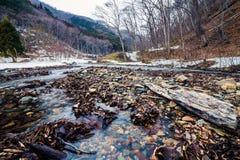 Nishi rzeka w zimie Zdjęcie Stock