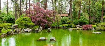 Nishinomiya Tsutakawa japanträdgård n Manito parkerar med dammet och den blyga fisken i regnet royaltyfri fotografi