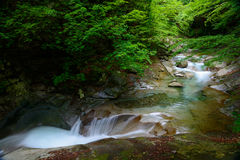 Nishizawa Valley in Yamanashi, Japan. Nishizawa Valley is the valley of Fuefuki River, located in north Yamanashi. It is a part of Chichibu-Tama-Kai National Stock Photos
