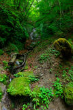 Nishizawa Valley in Yamanashi, Japan Royalty Free Stock Photography