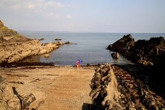 niska fala na plaży Zdjęcia Royalty Free
