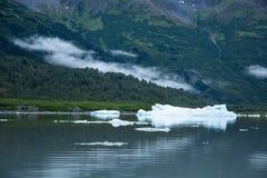 Niska mgła nad glacjalnym jeziorem z górami lodowa w Alaska Obraz Royalty Free
