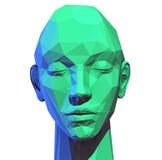 Niska poli- ludzka głowa Zdjęcie Stock