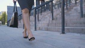 Niska sekcja chodzi praca biznesowa kobieta zbiory