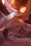Niski antylopa jar (1) Fotografia Stock