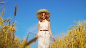 Niski kąt strzelał szczęśliwy romantyczny czerwony z włosami kobiety odprowadzenie na pszenicznym polu zbiory wideo