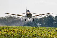 Niski Latający samolot Rozpyla pole słoneczniki fotografia royalty free